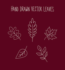 Hand Drawn Leaves Icon Set Over Red Background, Vector Illustration