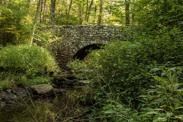 Stone bridge in the forest