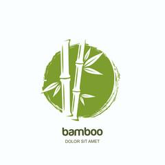 Wektorowy logo, etykietka lub emblemat z akwarelą, wręczamy patroszoną zieloną bambusową roślinę. Koncepcja salonu spa i urody, masaż azjatycki, pakiet kosmetyków, materiały meblowe.