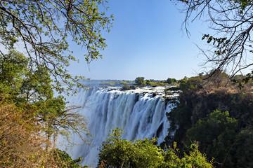 Branches Frame Victoria Falls