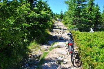 Aktywnie w górach na rowerze