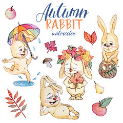 Set of watercolor Autumn rabbit, isolated on a white isolated background