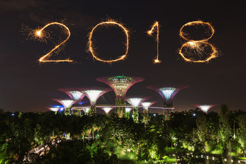 2018 Happy new year firework Sparkle with Gardens by the bay at night, Singapore