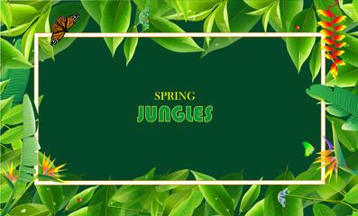spring jungles
