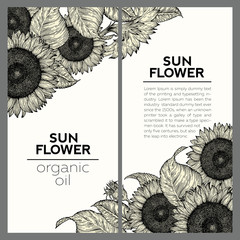 Set of two sunflower vintage design templates. Vector hand drawn illustration. Sunflower frame composition.
