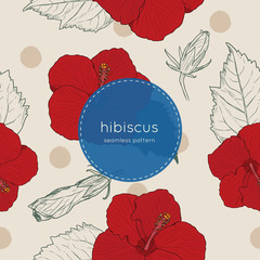 Set of Chinese Hibiscus hand draw seamless pattern vector.