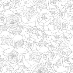 Seamless background pattern. Hand-drawn pion-shaped roses on white background.