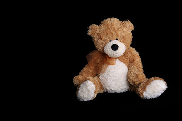 A brown and white teddy bear against a black background