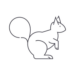squirrel vector line icon, sign, illustration on white background, editable strokes