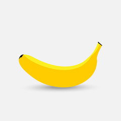 Vector banana. Fresh banana on white background