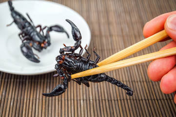 fried black scorpion