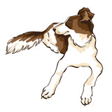 Vector Hand Draw Illustration Of Cute Dog On White Background For