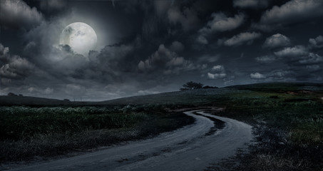 Rural road through the meadow at night against the background of the big moon