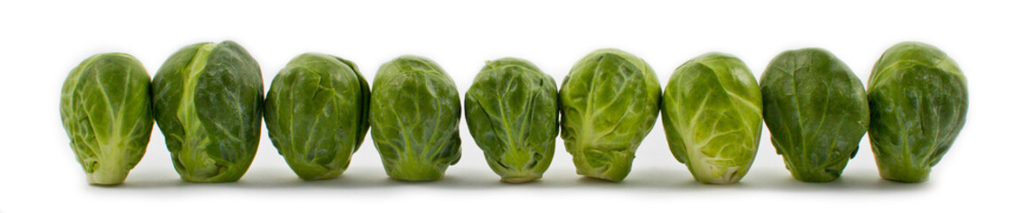 Lined-up Brussel Sprouts