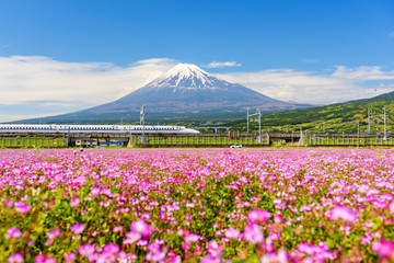 Shinkansen and car run through Mt. Fuji