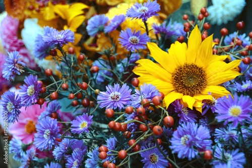 Herbst Blumen Stock Photo And Royalty Free Images On Fotolia Com