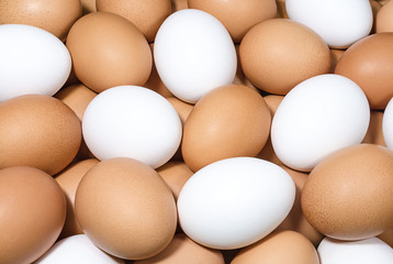 Brown and white eggs background