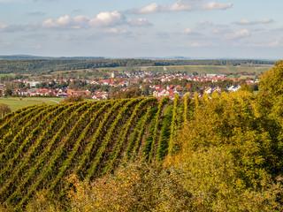 Weinort Oberderdingen