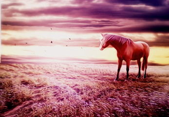 Romantic scenery with horse