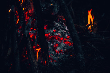 Fire, tourism, in the woods. Red fire, tonal correction