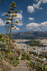 View to Athens