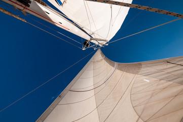 прогулка в море на парусной яхте белого цвета