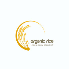 Vector logo, label or package circle emblem with yellow rice, wheat, rye grains. Design template for asian agriculture, organic cereal products, bread and bakery.