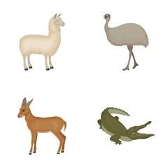 lama, ostrich emu, young antelope, animal crocodile. Wild animal, bird, reptile set collection icons in cartoon style vector symbol stock illustration web.