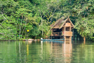 Wooden treehouse style cabin in the jungle