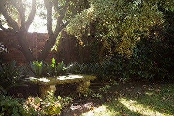 Empty stone bench by plants against surrounding wall