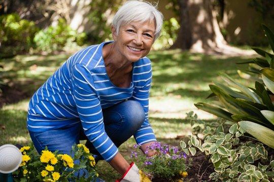 Portrait of happy senior woman kneeling while planting flowers
