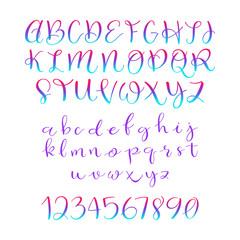 Calligraphic vector script font