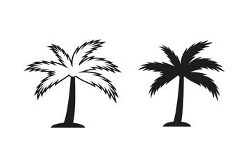 Palm tree vector icon.