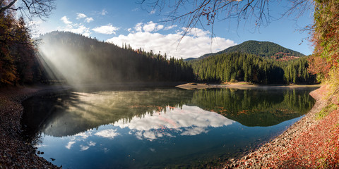 gorgeous foggy morning on the mountain lake. beautiful moment of sun rays path through forest and fog. lovely panoramic autumn scenery