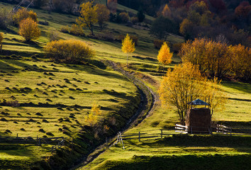 haystack behind the fence near the path on hillside in autumn. beautiful countryside scenery with yellow trees