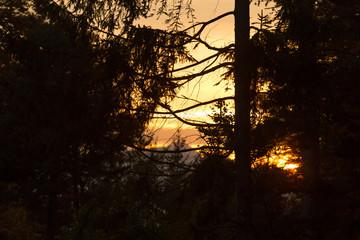 Landschaftliche Silhouette im Sonnenuntergang