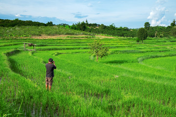 Urban Male Photographer taking a photo of lanscape rice terrace.