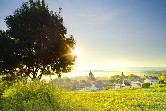 France, Grand Est, Ville-Dommange