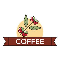 Coffee icons illustration