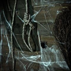 Halloween, crow, straw, animal skull, pumpkin, candles