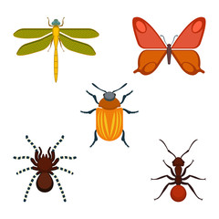 Collection of bugs and insects on vector illustration