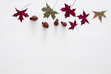 top view image of autumn leaves over wooden white background