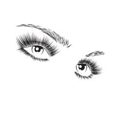 Vector illustration Beautiful woman eyes with long eyelashes