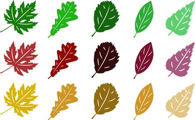 Autumn leaves set, isolated on white background. Simple cartoon flat style. Vector illustration.