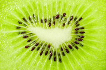 Texture of slices kiwi frui.