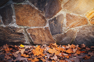 Autumn maple leaves over stone background with copy space. warm color. abstract colorful and texture
