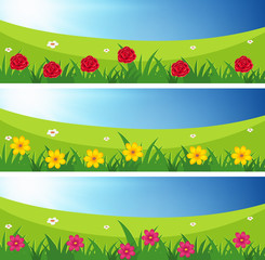 Three scenes of fields with flowers