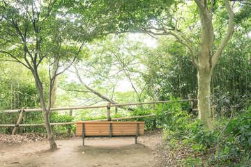 ベンチのある風景 柿田川公園