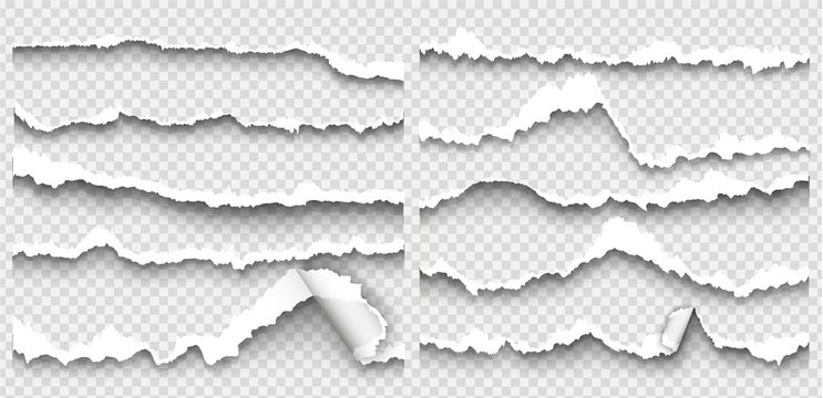 set of torn paper on transparent background