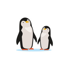Couple of penguins sitting on an ice, Arctic fauna species vector Illustration